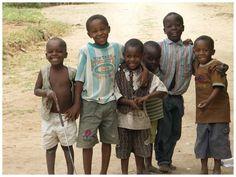Moskitos und Malaria - Safari Insider