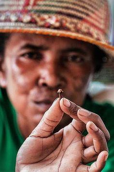 Madagaskar is (na India) de grootste producent van kruidnagel ter wereld. Maar hoe krijgen de boeren een eerlijke prijs? https://dekleurvangeld.nl/bloeiende-kruidnagel-handel/