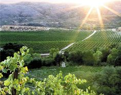 Temecula Valley Wine Country, California