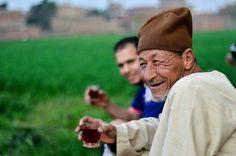 Farmers drinking tea # Egypt