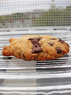 Paleo Chocolate Chip Cookies: Comparing 6 Recipes: paleo recipes, dessert recipes and Scd Recipes, Whole Food Recipes, Cookie Recipes, Dessert Recipes, Healthy Recipes, Desserts, Drink Recipes, Paleo Chocolate Chip Cookies, Fermented Foods