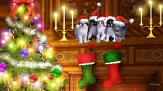 WISHING EVERYONE A MERRY CHRISTMAS :: Care2 Feedback and Suggestions :: Care2 Groups