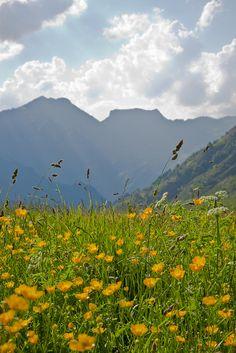 Col du Somport, Aspe Valley / Vallée d'Aspe, Pyrénées-Atlantiques, Aquitaine, France.