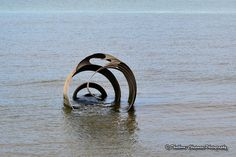 An unusual piece of beach sculpture at Cleveley's along the Fylde Coast, Lancashire.