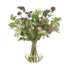 Thistle Daisy Thalictrum, Purple Green, Glass Decanter, 16wx14dx15h PF184
