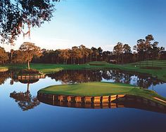 Hole #17 at the TPC Sawgrass...the most intimidating hole in golf