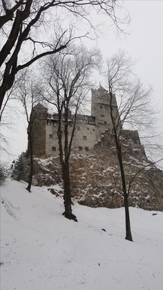 Bran castle well known as the Dracula's castle century) in Bran village Dracula Castle, Places Ive Been, Snow, Country, World, City, Pictures, Outdoor, Photos