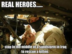 Behind the Photo: Soldiers Save Kitten from Iraq Sandstorm | Catster