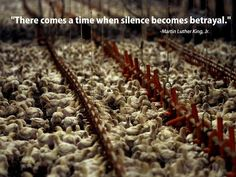 There Comes A Time When Silence Becomes Betrayal