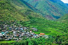 banaue rice terraces - luzon philippines