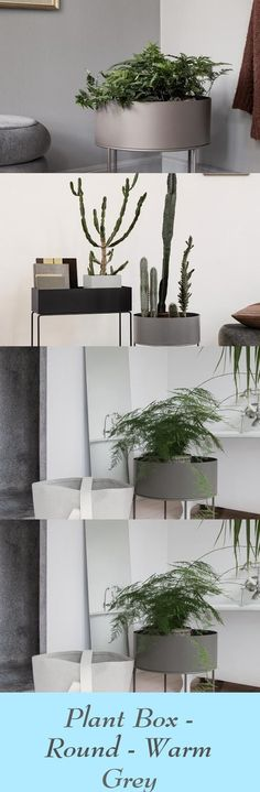 Altering up the form of one among our timeless items, the Plant Field, welcomes an natural expression into the house. It preserves the clear strains and modern look of the Plant Field, as we all know it, however with a. Warm Grey, Gray, Plant Box, Wire Baskets, Floating Shelves, This Is Us, Decoration, Modern, Plants