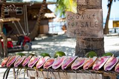 Fresh conch and coconuts for sale on Ambergris Caye [Olivera Rusu]