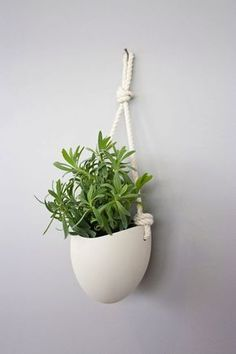 10 Best Ceramic Wall Planters Images Ceramic Wall 400 x 300