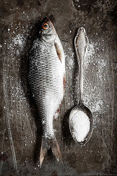Find Fish stock images in HD and millions of other royalty-free stock photos, illustrations and vectors in the Shutterstock collection. Food Photography Styling, Food Styling, Photography Ideas, Fish Stock, Still Life Photos, Fish Art, Food Pictures, Food Pics, Fish And Seafood
