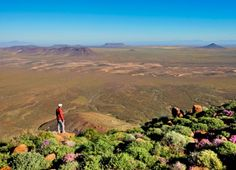 Getaway readers' favourite national parks and reserves. While Kruger National Park was the out-and-out winner for your favourite park in South Africa, here. Kruger National Park, National Parks, Magazine Stand, Travel Magazines, South Africa, Exploring, Wildlife, Wanderlust
