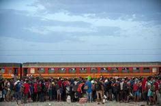notizie:  Ue: oltre metà dei profughi tra Germania, Francia...