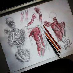 Estudo da noite. #drawing #sketch #anatomy