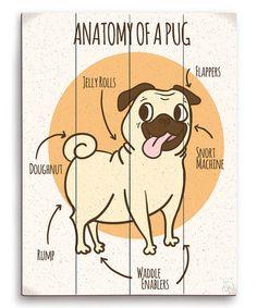 Love this 'Anatomy of Pug' Wall Art on #zulily! #zulilyfinds