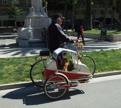 bike with sidecar for dogs