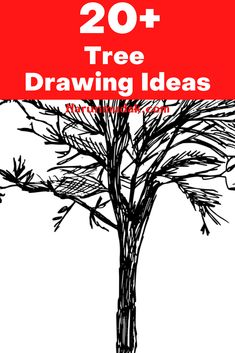 Trees are our source of life them. If you need ideas to draw these magnificent structures, you can find them here.