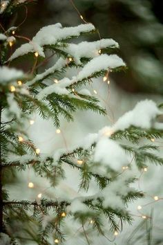 New Ideas For Christmas Wallpaper Backgrounds Winter Wonderland Xmas Christmas Mood, Noel Christmas, Merry Little Christmas, White Christmas Snow, Christmas Tumblr, Christmas Houses, Christmas Scenes, Christmas Wishes, Christmas Pictures