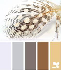 Color palettes!