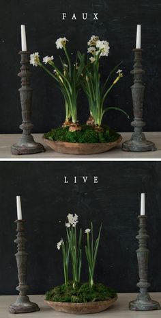 If you want something more long-lasting, I suggest using faux florals, like these Paper White Bulbs. These are from my store, Magnolia Market, but you can use any faux florals you're drawn to. I created this arrangement with floral foam and moss from the local craft store, and a wooden serving bowl from my cupboard. I stuck the floral stem into the foam, left the bulb exposed, and covered the foam with moss. These are perfect for an entryway, dining table centerpiece, or coffee table.