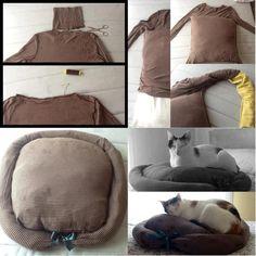 hoe maak je je kat of hond ook eens blij met je oude kleding ;-)