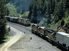 Union Pacific Railroad grain and piggyback trains meet at Motanic, OR