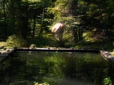 The Reflecting Pool, Bill Viola