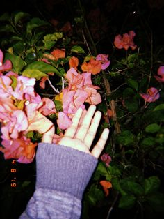 Fingerless Gloves, Arm Warmers, Flowers, Fingerless Mitts, Fingerless Mittens, Cuffs, Floral, Royal Icing Flowers, Florals