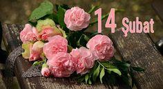 Sevgilinize ve eşinize gönderbileceğiniz en #güzel #resimli #sevgililergünü #sevgililergunu mesajları sitemizde. #14Şubat Sevgililer Gününüz kutlu olsun. https://goo.gl/oV3Gyy