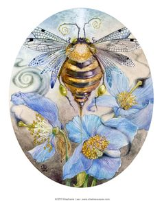 The Art of Stephanie Law - bee and flowers watercolor painting and drawing nature artwork Illustrations, Illustration Art, Megan Hess, Beauty In Art, Earth Design, Beautiful Bugs, Bee Art, China Painting, Painting Art