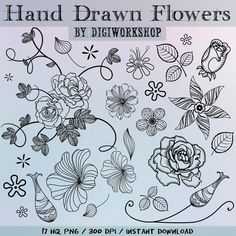 """Hand Drawn flowers clipart - """"Hand Drawn Flowers"""" set with hand drawn black flowers, leaves, flowers, twigs and ornaments."""