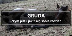 Gruda - czym jest i jak z nią sobie radzić?