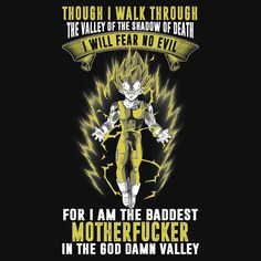 Vegeta -Though i walk through the valley of the shadow death i will fear no evil for i am the baddest