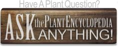 Ask Anything about Plants... Master Site!