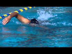 Fast Swimming Secret Tip - Head Position Swimming Diving, Swimming Tips, Keep Swimming, Sea Diving, Freestyle Swimming, Diving Videos, Swim Technique, Tennis Trainer, Swim Lessons