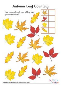 Autumn Leaf Counting 3