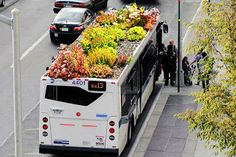 Arquitetura Sustentavel: Ônibus com telhado verde?