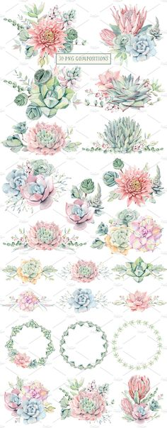 AMAZING SUCCULENTS Watercolor set by Lemaris on @creativemarket