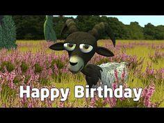 Deine persönlichen Glückwünsche zum Geburtstag - YouTube