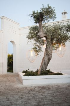 Where to stay in Puglia, Italy - Petite Suitcase Exterior Design, Interior And Exterior, Romantic Hotel Rooms, Outdoor Spaces, Outdoor Living, Terrace Restaurant, Backyard Landscaping, Landscape Design, Architecture