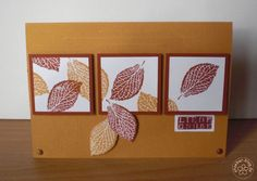 stampin up, cards autum, nice idea