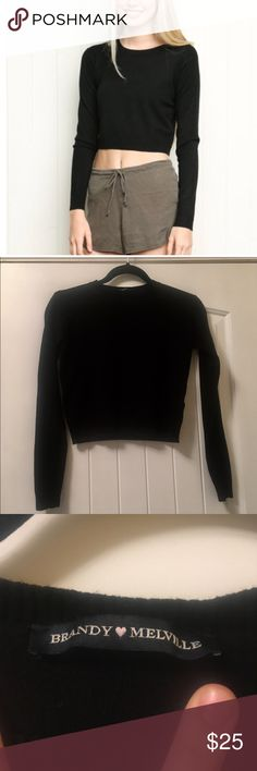 NWOT Brandy Melville Cropped Sweater Black cropped sweater from Brandy Melville. Soft and cozy and adorable on! Brandy Melville Sweaters Crew & Scoop Necks