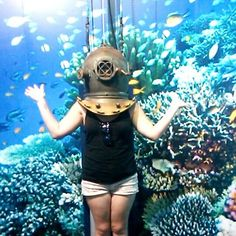 Outfit of the day. I'm the epitome of fashion!  #australia #townsville #aquarium #reefhq #gbr #greatbarrierreef #scuba #ootd #toocool #dontbejel #fashion by katiehodgkinson_ http://ift.tt/1UokkV2
