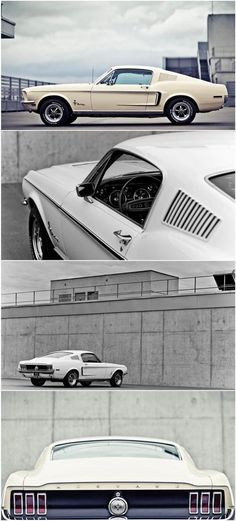 Ford Mustang American muscle cars are actually commonplace in the particular vehicle niche for decades. Ford Mustang Fastback, Mustang Cars, 1967 Mustang, Retro Cars, Vintage Cars, Ford 2000, Automobile, Bmw M Power, Classic Mustang