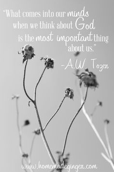 homemade ginger: Sunday Quote: A.W. Tozer