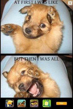 Ha haha!!