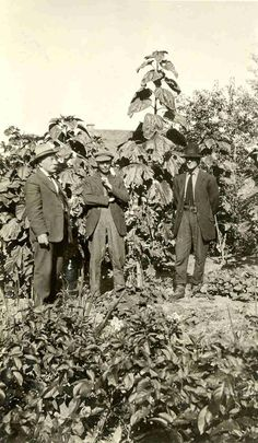 Our Legacy-Angus McKay (on left) in his garden at Lac Laronge Ancestry Tree, Our Legacy, Red River, Old West, Family History, Genealogy, Scrapbooking, Canada, Culture